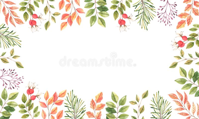 Hand drawn watercolor illustration. Frame with fall leaves, spruce branch and berries. Forest design elements. Hello. Autumn! Perfect for seasonal advertisement stock illustration