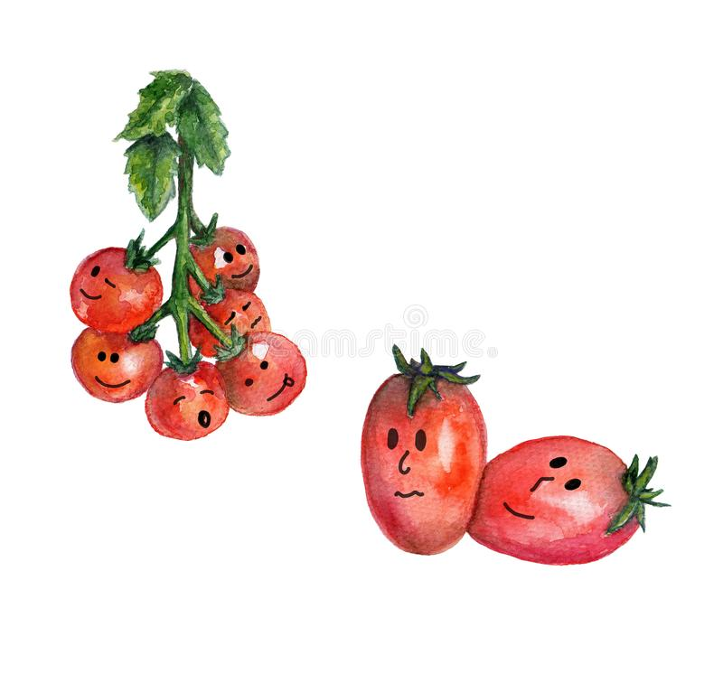 Hand drawn watercolor illustration with  funny cherry tomatoes with eyes, smiles and character. Organic creative poster with red tomatos. Tomato isolated on royalty free illustration