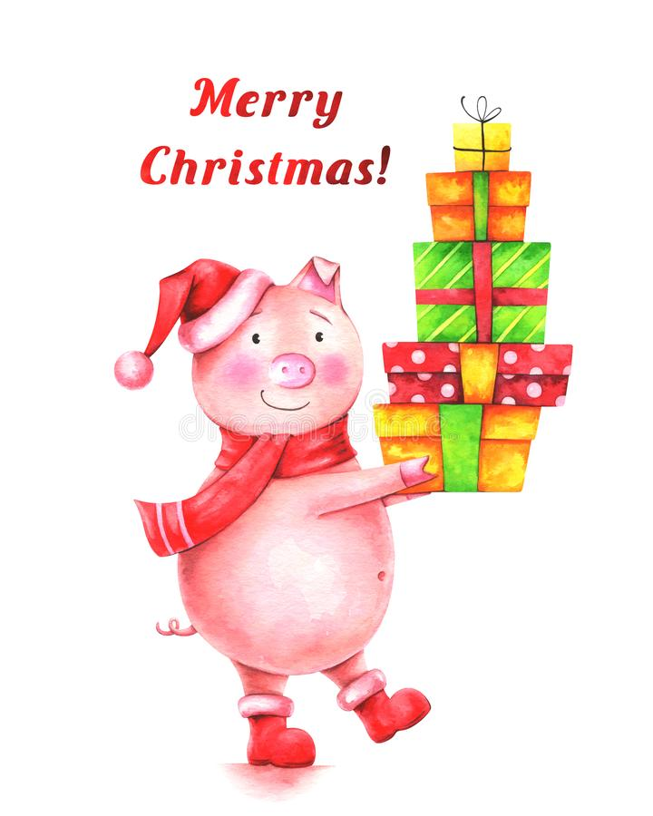Hand drawn watercolor illustration of funny pig in red Santa hat with gifts and text `Merry Christmas!` royalty free illustration