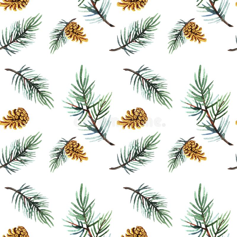 Hand drawn  watercolor illustration of seamless pattern pine branch with cone isolated on white background. Holiday design for textile, wrapping, wallpaper royalty free stock photos