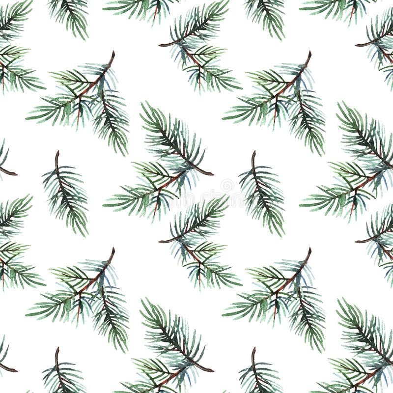 Hand drawn  watercolor illustration of seamless pattern pine branch isolated on white background. Holiday design for textile, wrapping, wallpaper, banner royalty free stock image