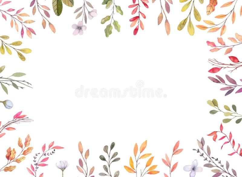 Hand drawn watercolor illustrations. Autumn Botanical border. Se vector illustration
