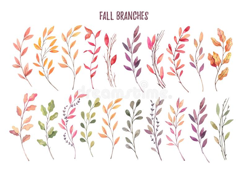 Hand drawn watercolor illustrations. Autumn Botanical clipart. S royalty free illustration