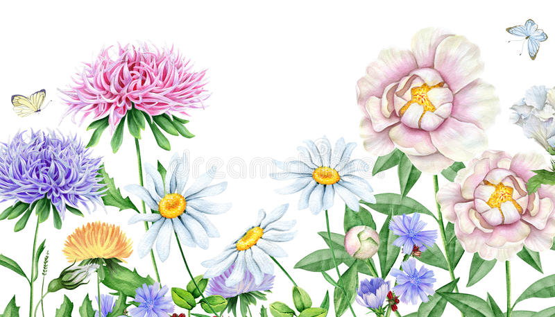 Hand drawn watercolor image of beautiful flowers stock illustration