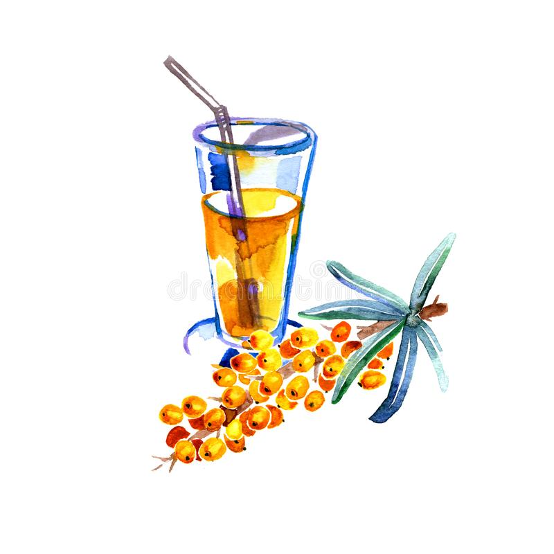 Hand drawn watercolor painting sea buckthorn tea on white background royalty free illustration