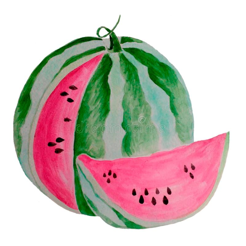 Hand Drawn Watercolor Painting. Watermelon with slice isolated on white background. Watercolor Illustration for Your Design. Hand Drawn Watercolor Painting royalty free illustration