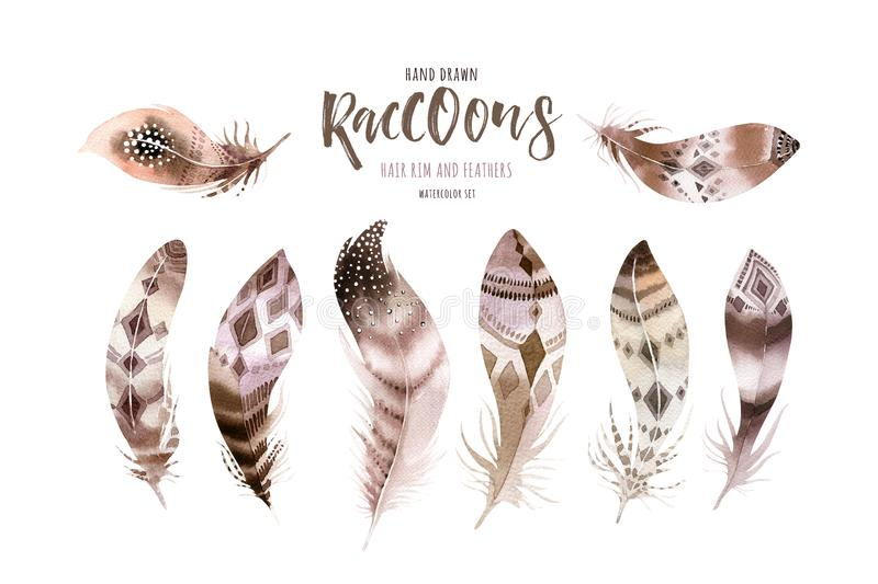 Hand drawn watercolor paintings vibrant feather set. Boho style wings. illustration isolated on white. Bird fly design stock photography