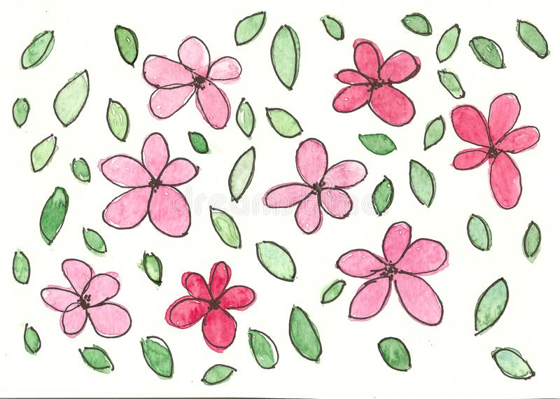 Hand drawn watercolor pink daisy flowers vector illustration