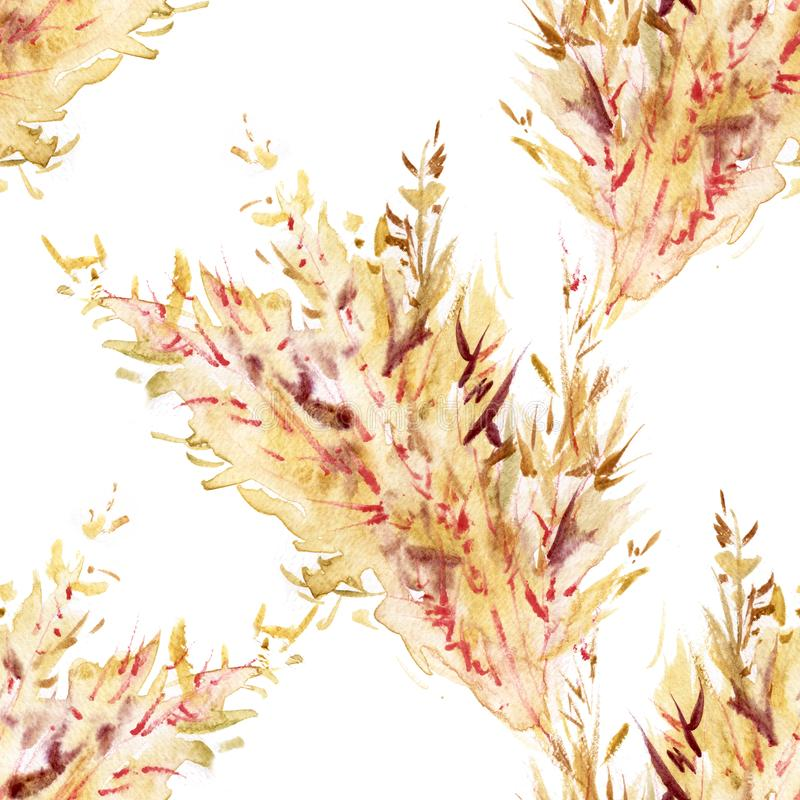 Hand drawn watercolor seamless repeated pattern with autumn yellow wheat ears. Spikelets of rye product illustration stock illustration