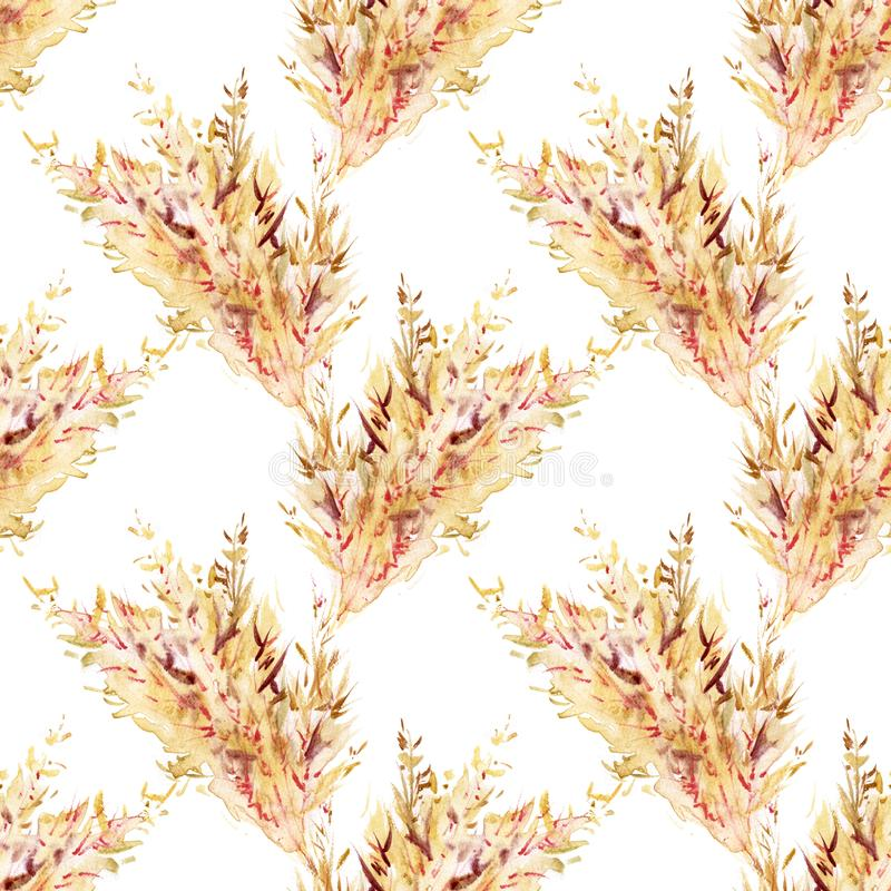 Hand drawn watercolor seamless repeated pattern with autumn yellow wheat ears. Spikelets of rye product illustration vector illustration
