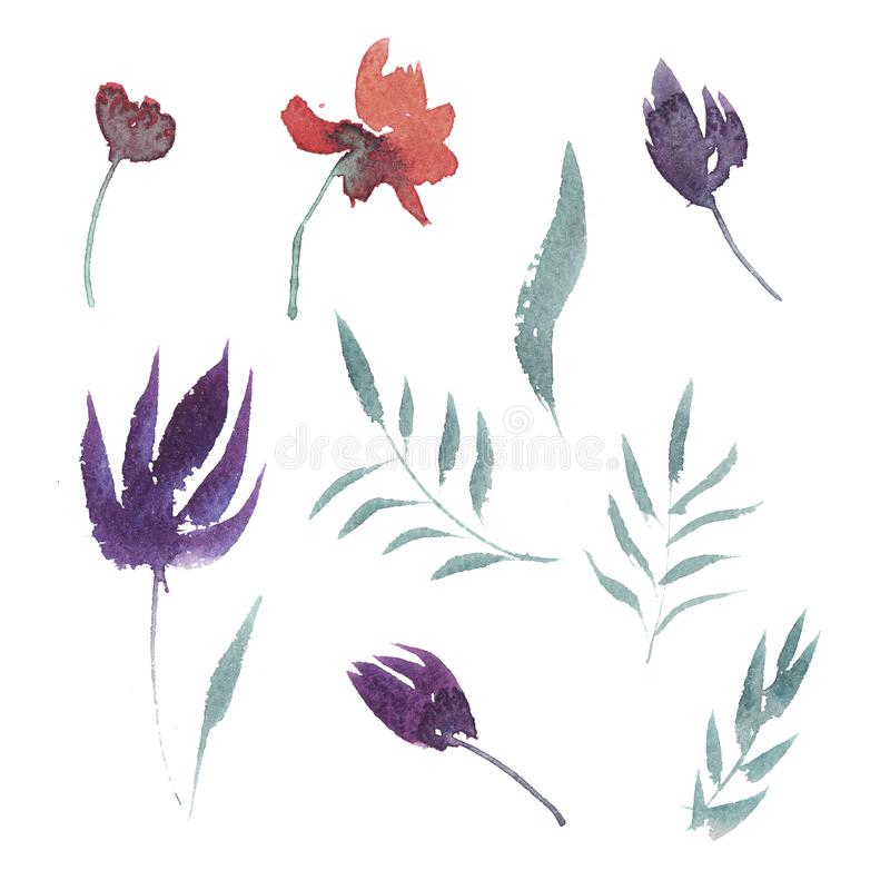 hand drawn watercolor set of flowers and leaves royalty free illustration