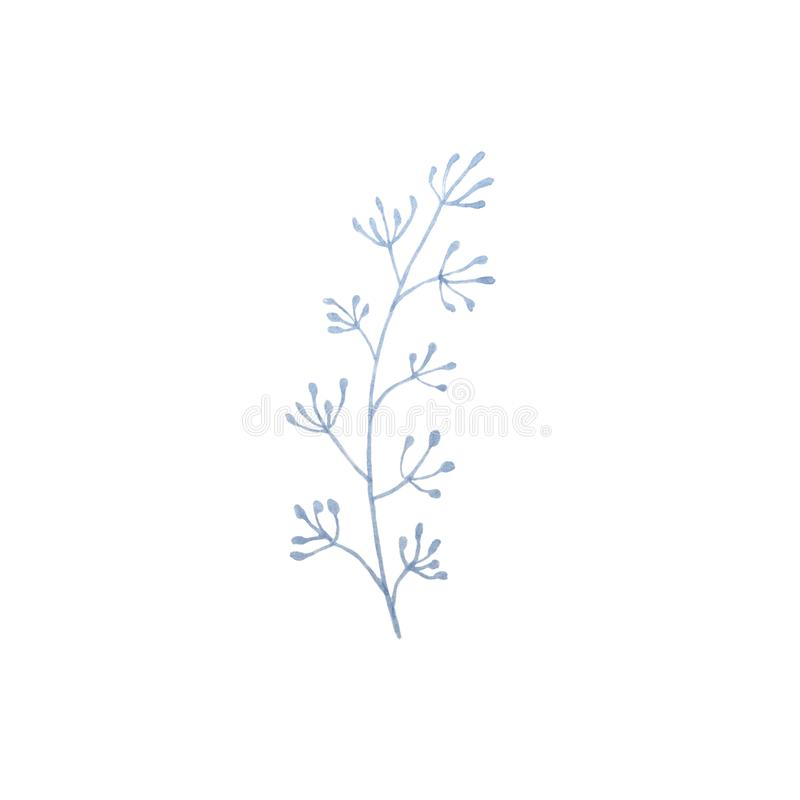 Hand drawn watercolor spring blue twig. Hand drawn watercolor blue twig royalty free illustration