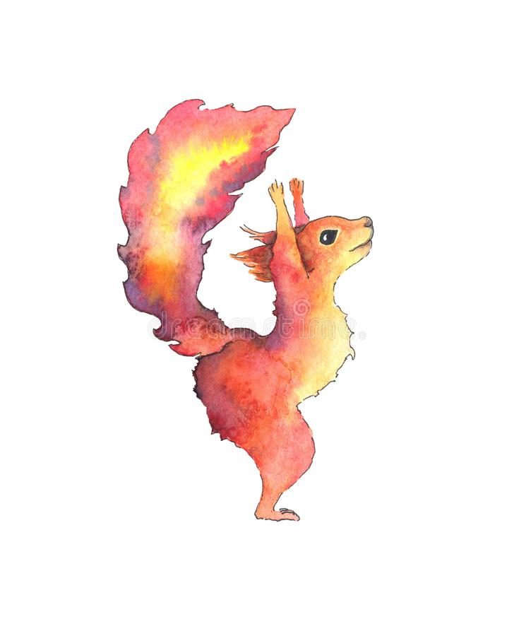 Hand drawn watercolor squirrel isolated on white background royalty free illustration