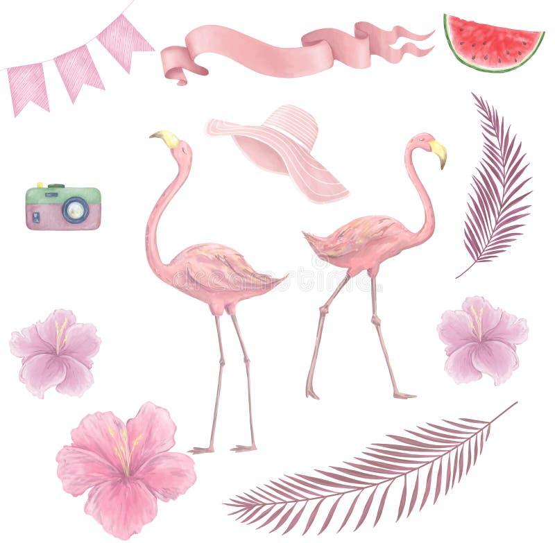 Hand drawn watercolor tropical birds set of flamingo. Exotic rose bird illustrations, jungle tree, brazil trendy art. Perfect for vector illustration