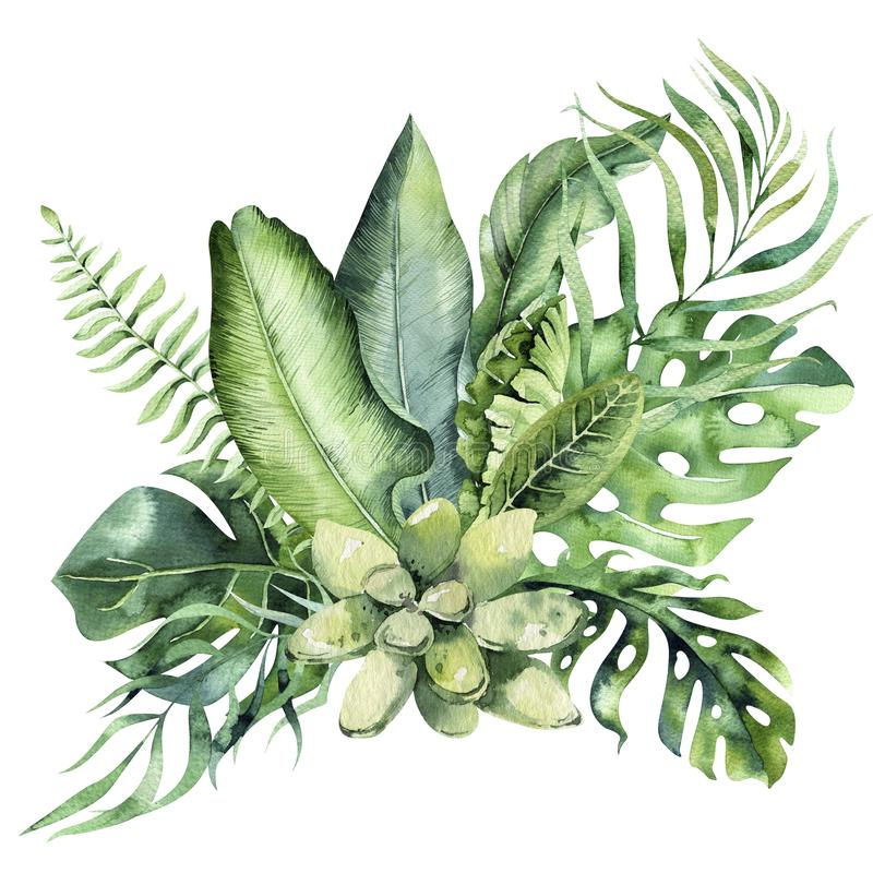 Hand drawn watercolor tropical flower bouquet composition. Exotic palm leaves, jungle tree, brazil tropic botany royalty free illustration