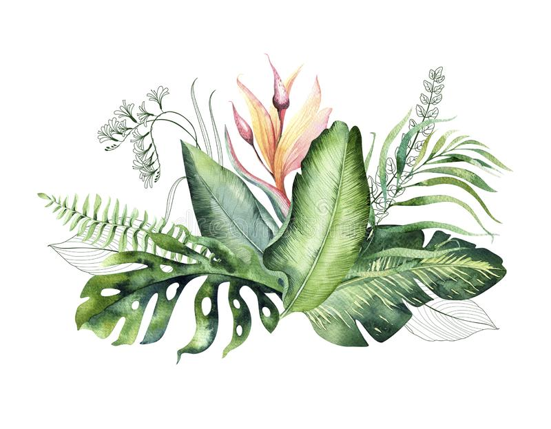Hand drawn watercolor tropical flower bouquet composition. Exotic palm leaves, jungle tree, brazil tropic botany. Hand drawn watercolor tropical flower bouquets vector illustration