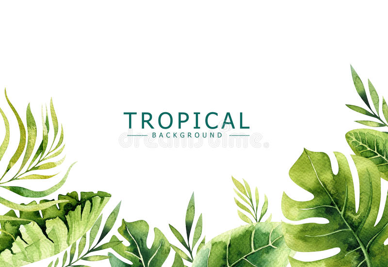 Hand drawn watercolor tropical plants background. Exotic palm leaves, jungle tree, brazil tropic borany elements. Perfect for fabric design. Aloha collection