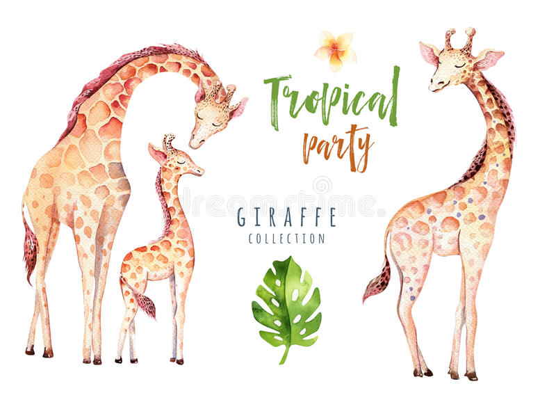 Hand drawn watercolor tropical plants set and giraffe. Exotic palm leaves, jungle tree, brazil tropic botany elements stock illustration