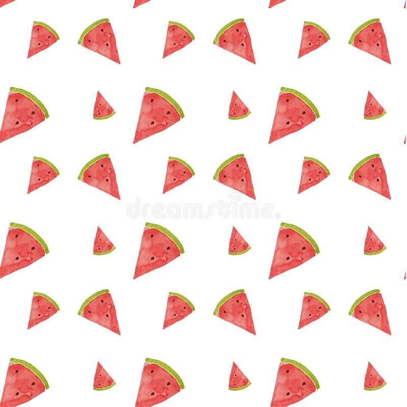 Hand drawn watercolor watermelon pattern. Summer illustration. Watermelon design element, template for summer background vector illustration