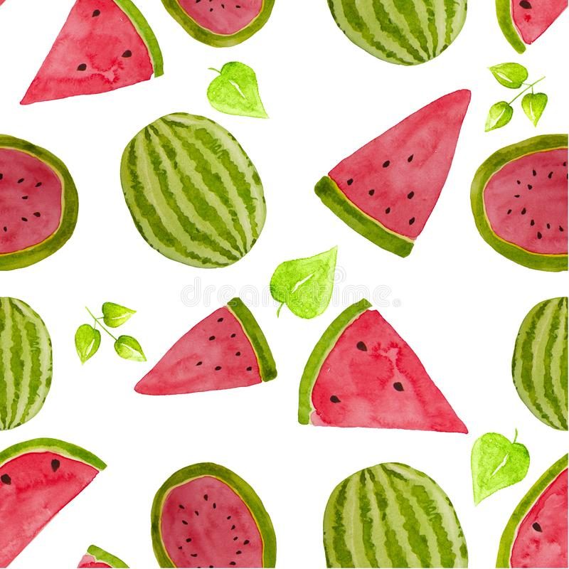 Hand drawn watercolor watermelon pattern. Summer illustration. Watermelon design element, template for summer background royalty free illustration
