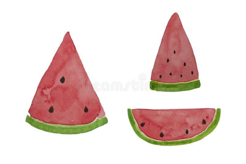 Hand drawn watercolor watermelon slice. Summer illustration. Watermelon design element, template for summer background. Hand drawn watercolor watermelon slice vector illustration