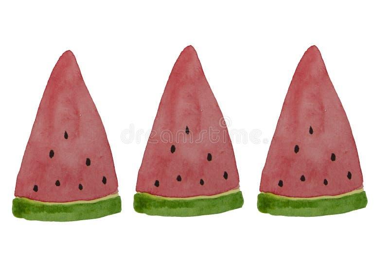 Hand drawn watercolor watermelon slice. Summer illustration. Watermelon design element, template for summer background. Hand drawn watercolor watermelon slice stock illustration