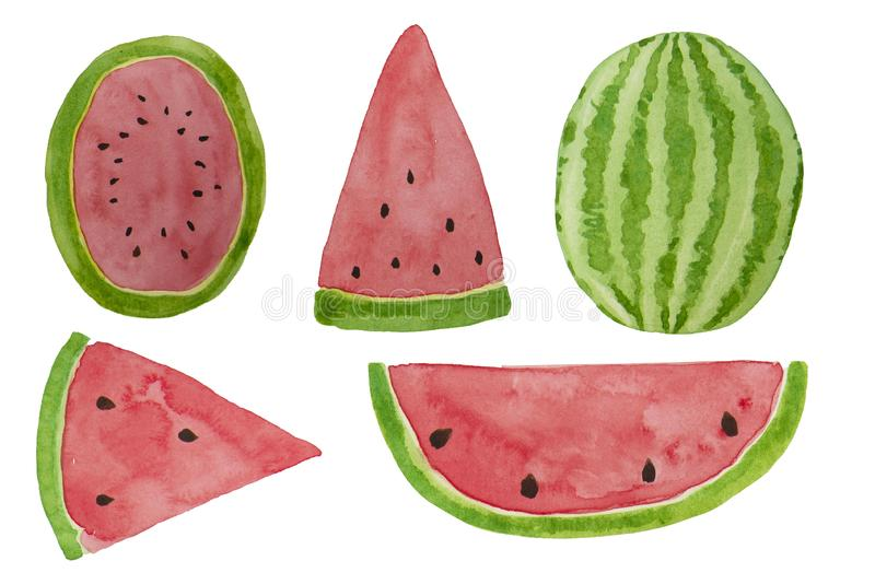 Hand drawn watercolor watermelon slices set. Summer illustration. Mix of watermelon slices design element, template for summer royalty free illustration