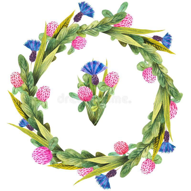 Hand drawn watercolor wreath made of meadow wildflowers: blue cornflowers, wild field herbs isolated on white. royalty free illustration