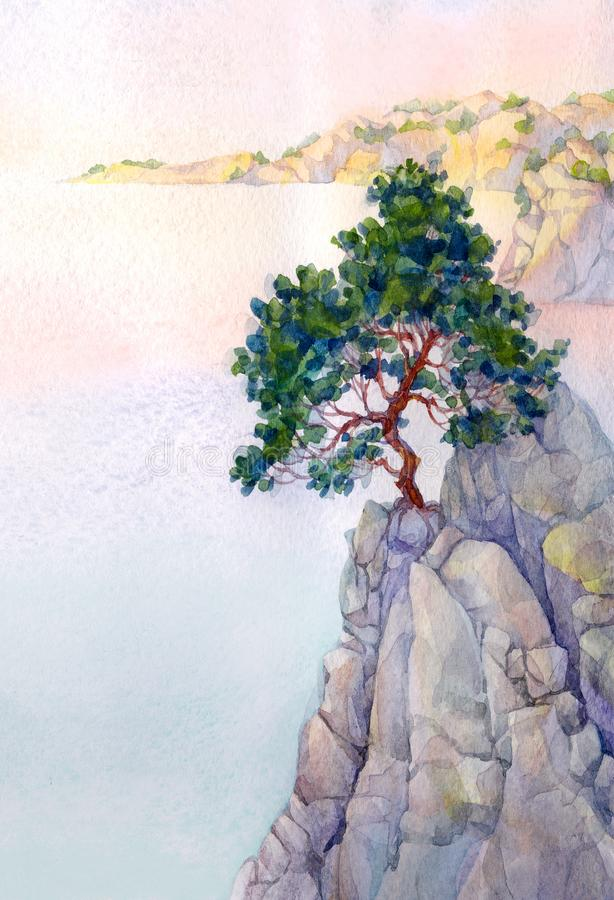 Pine on a high rocky cliff above the sea stock illustration