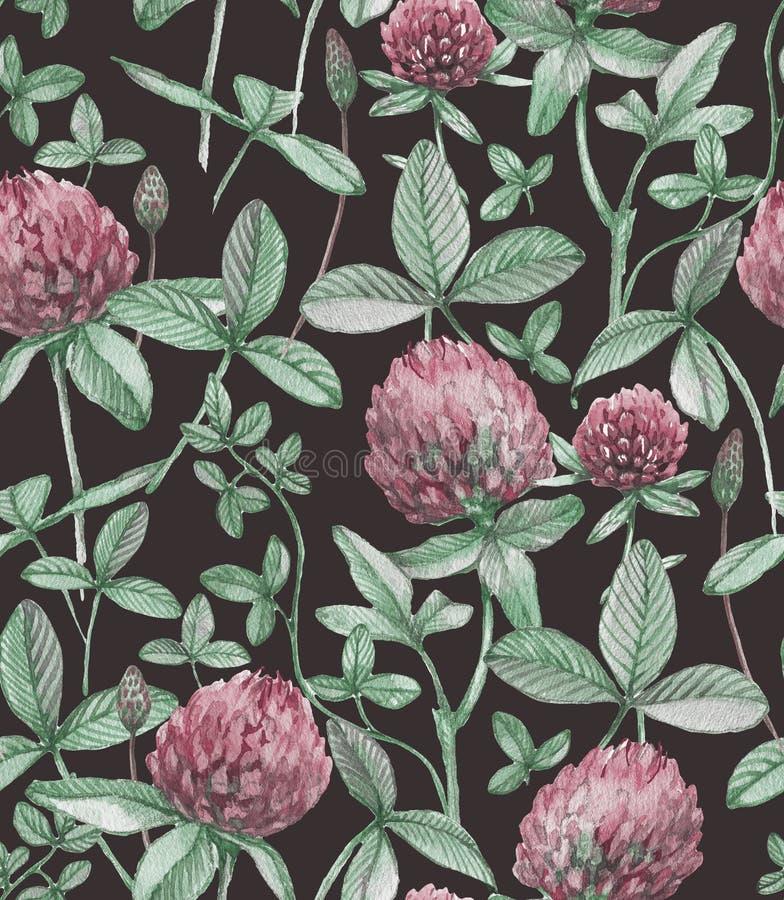 Hand-drawn waterverf naadloos bloemenpatroon met de roze klaverbloemen en de bladeren Klaverpatroon stock fotografie