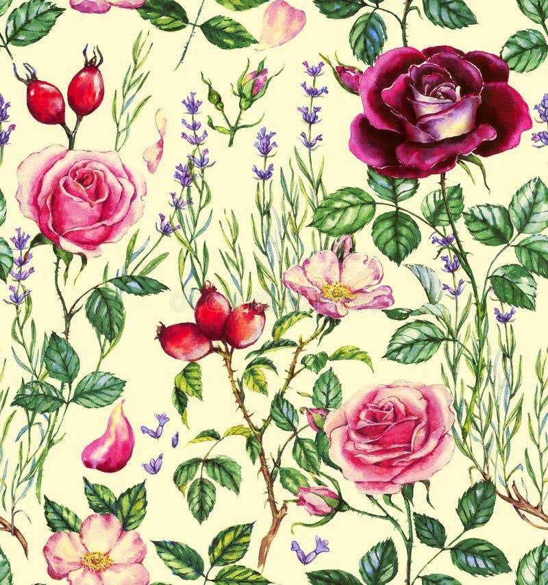 Hand-drawn waterverf naadloos botanisch patroon met verschillende installaties vector illustratie