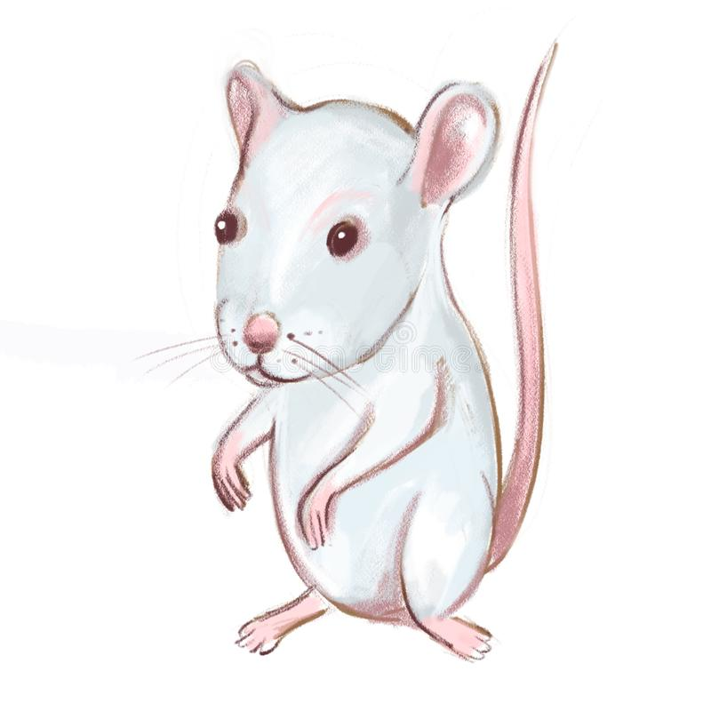 Hand drawn white mouse on white background. Chinese Zodiac animal. Year of Mouse. Year of Rat. Hand drawn white mouse on white background royalty free illustration
