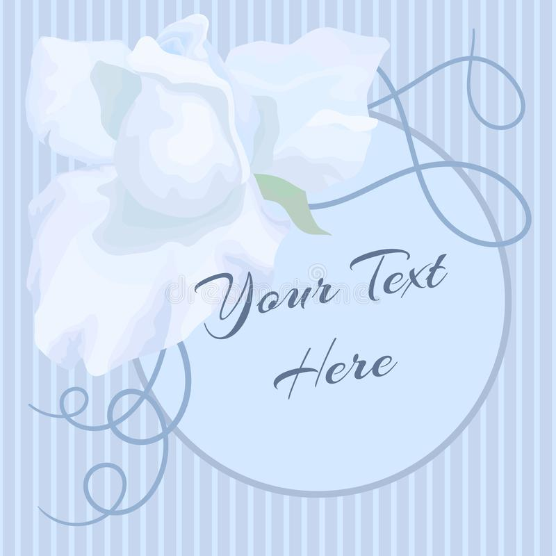 The hand drawn white rose bud on the stripe background. Blue colors. Desighn for a postcard. The picture have circle for text vector illustration