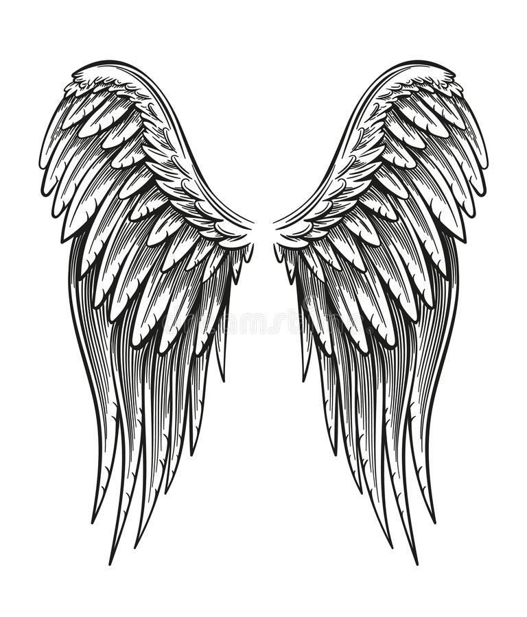 Hand Drawn Wings stock illustration