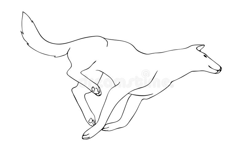 download hand drawn wolf outline vector black running predator on white background sketch animal