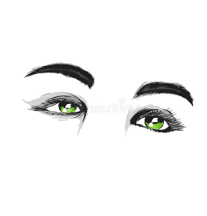 Hand-drawn woman`s makeup look with perfectly perfectly shaped eyebrows and extra full lashes. Perfect salon look. vector illustration