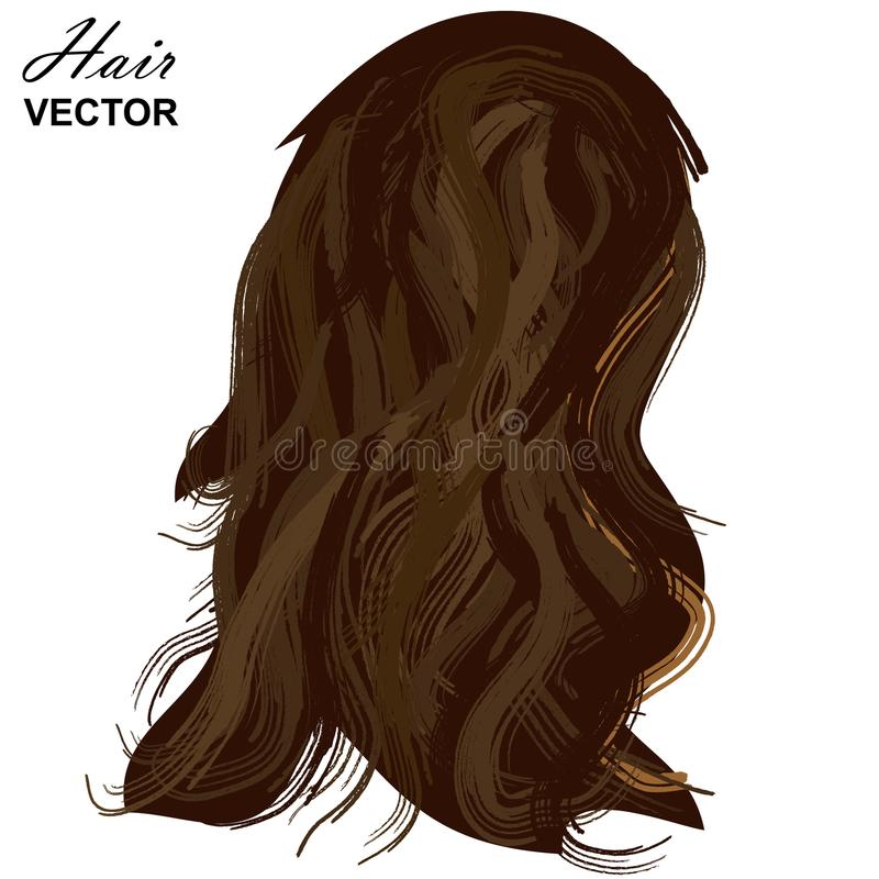 Realistic Woman Hair Template. Vector Illustration royalty free illustration