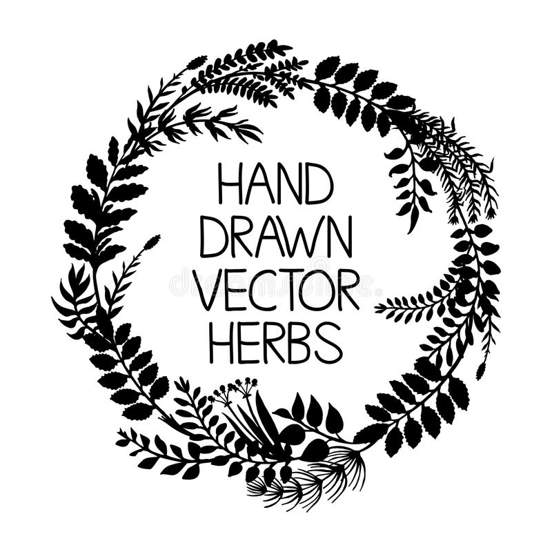 Hand drawn wreath of herbs and plants, vector illustration. vector illustration