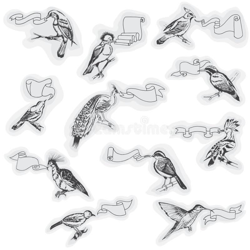 Hand drog fåglar med tecken royaltyfri illustrationer