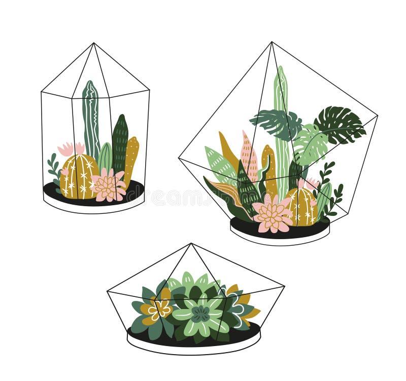 Hand drog innehållna tropiska husväxter Skandinavisk dekor för illustration för vektor för stil modern och elegant hem-, royaltyfri illustrationer