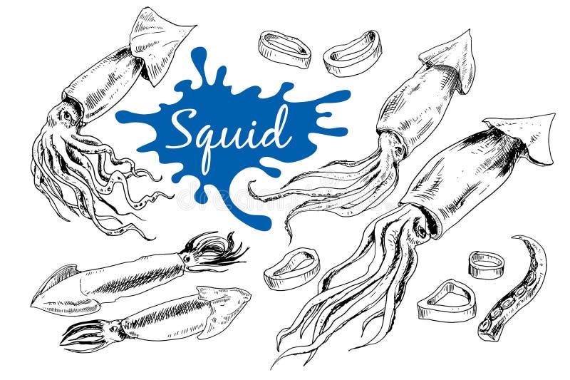 Hand drog inristade symboler Läckra matmenytioarmade bläckfiskar vektor illustrationer