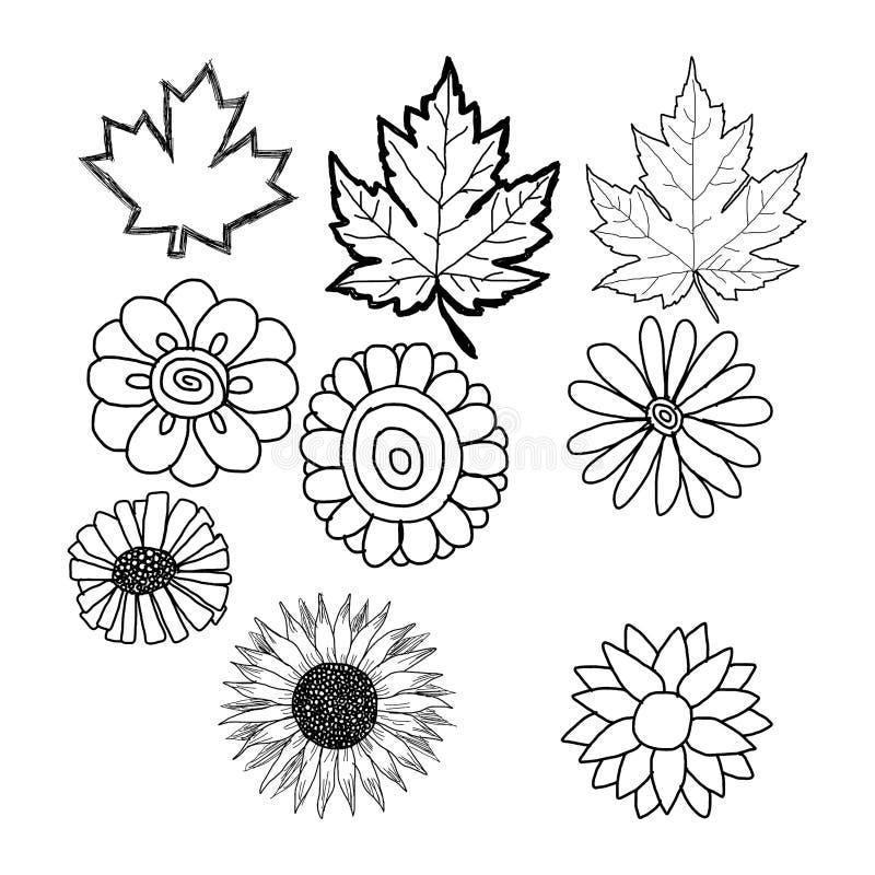 Hand drog klotter av blomman och bladet royaltyfri illustrationer