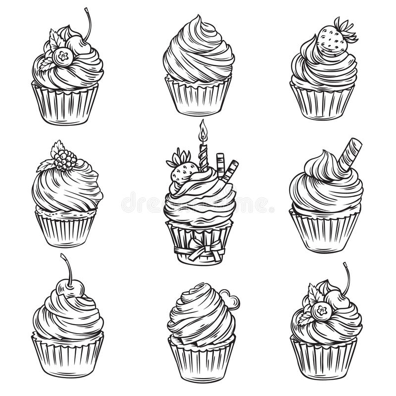 Hand drog muffin royaltyfri illustrationer