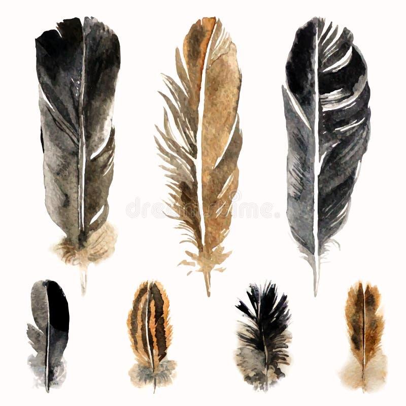 Hand drog vattenfärgfjädrar stock illustrationer