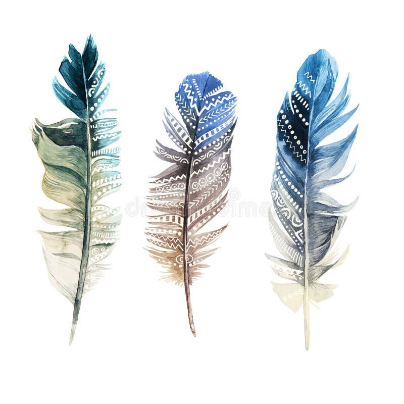 Hand drog vattenfärgfjädrar med prydnader royaltyfri illustrationer