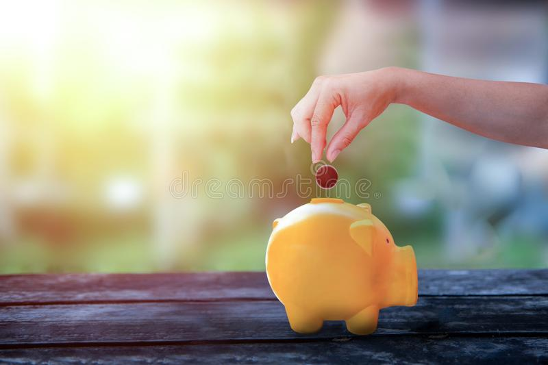 Hand droping cion in piggy bank royalty free stock photo