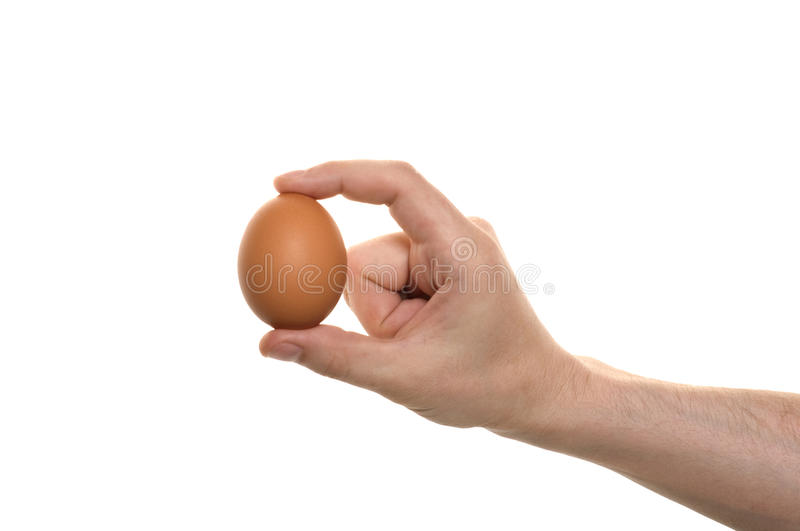 Hand with egg