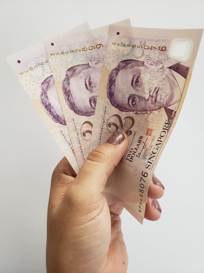 Hand einer Frau, die singapurische Banknoten hält lizenzfreie stockfotografie