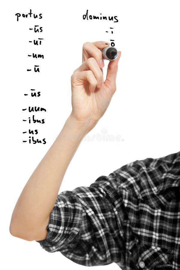 Hand eines Kursteilnehmermädchens, das zwei lateinische Wörter declinating ist stockfoto