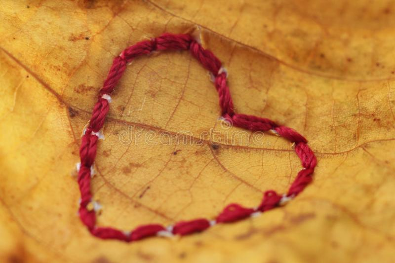 hand embroidery on lime leaf - heart theme royalty free stock photo